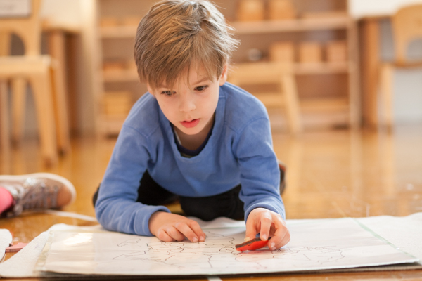 Each classroom is equipped with specific Montessori materials designed to be used in specific ways in coordination with the Montessori philosophy.